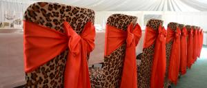 animal print chair covers for that traditional wedding