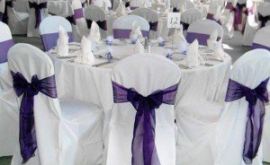 Chair Covers For Sale Wholesaler Of Chair Covers Sa